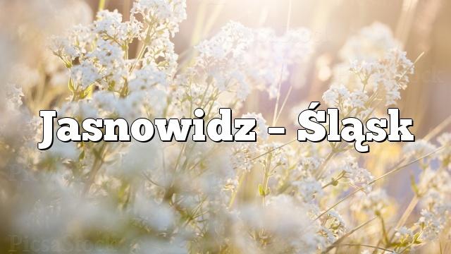 Jasnowidz – Śląsk