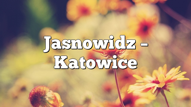 Jasnowidz – Katowice